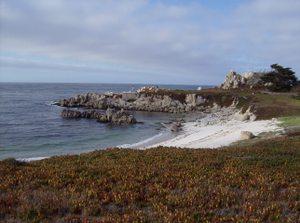 California_350